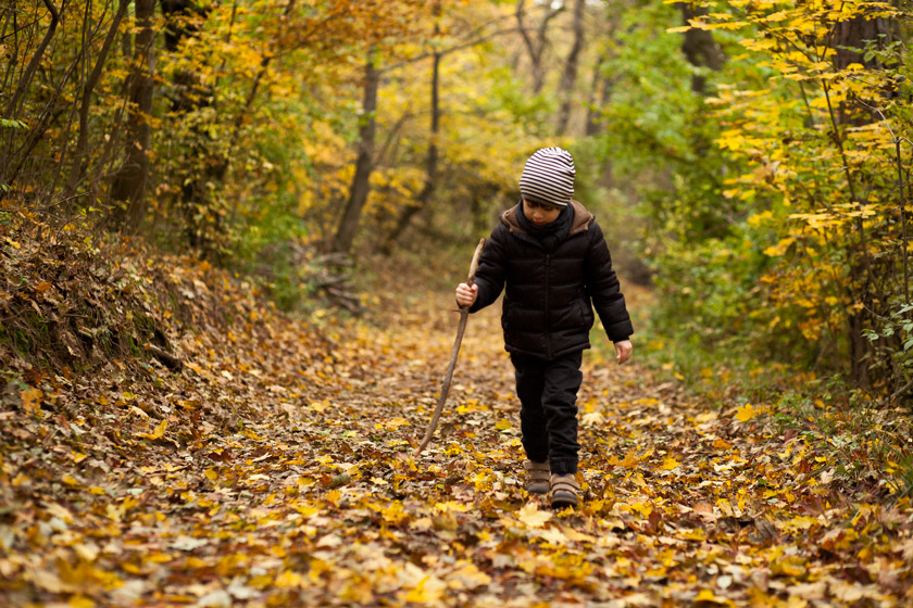 Magyarországon az őszi táj kiváló a kirándulásokra!